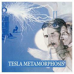 Tesla Metamorfoza